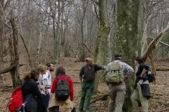 Lezione nel bosco