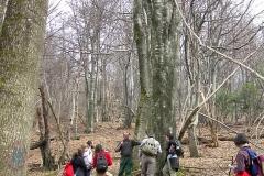 lezione-nel-bosco