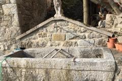 fontana-con-leone